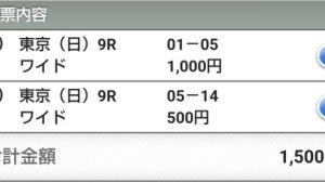 【競馬予想】2019年11月3日 東京・京都 9レースの予想
